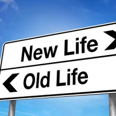 Жизнь с чистого листа: не повторяй общих ошибок